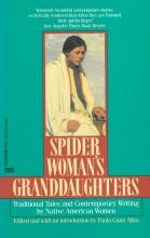 Book cover of Spider Woman's Granddaughters